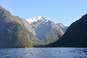 Fjordland views